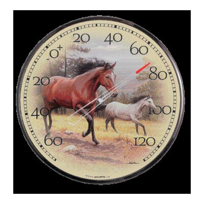 Chaney Thermometer Horse