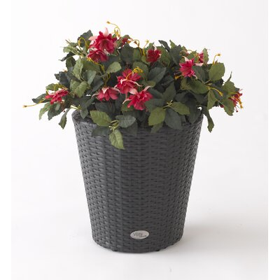 Vista Resin Wicker Round Planter