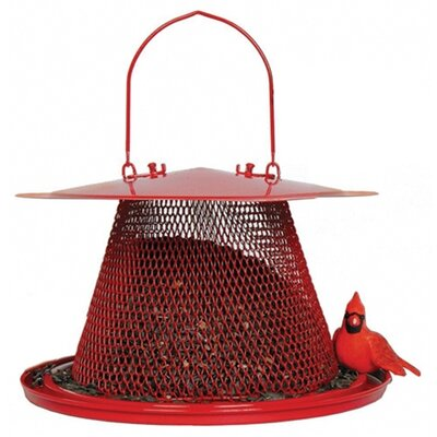 No/No Feeder Red Cardinal Feeder