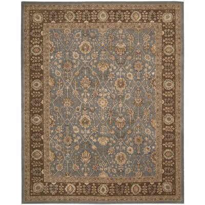 Nourison Light Blue/Brown Rug