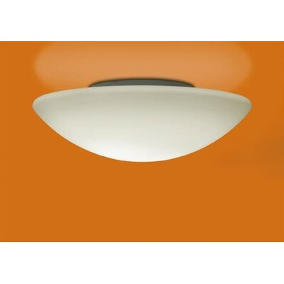 Illuminating Experiences Janeiro Wall Sconce