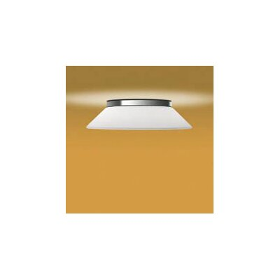 Illuminating Experiences Abele Ceiling Light