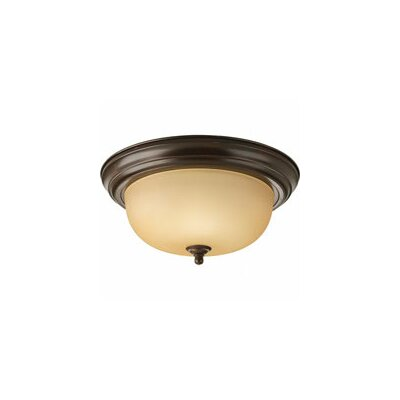 2 Light Ceiling Light