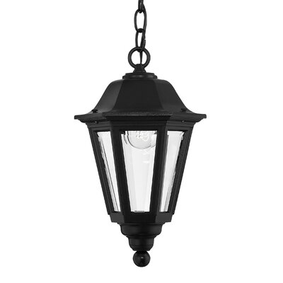 Hinkley Lighting Manor House Hanging Lantern in  Black