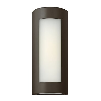 Hinkley Lighting Solara 1 Light Narrow Outdoor Wall Lantern