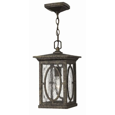 Hinkley Lighting Randolph 1 Light Outdoor Hanging Lantern