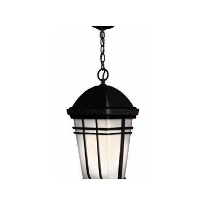Hinkley Lighting Buckley Outdoor Hanging Lantern