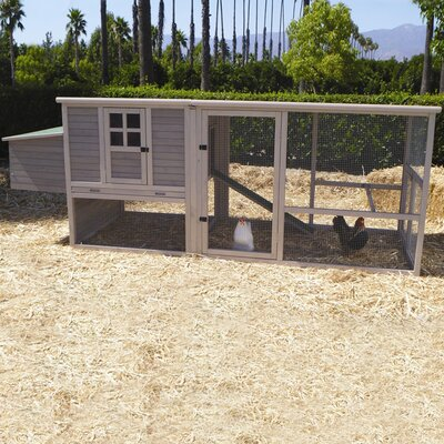 <strong>Precision Pet Products</strong> Extreme Hen House Chicken Coop with Nesting Box, Ramp and Roosting Bar