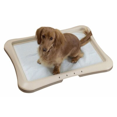 Richell Paw Trax Large Training Tray
