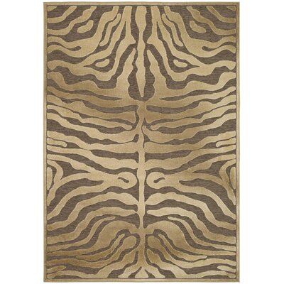 Safavieh Paradise Light Assorted Rug