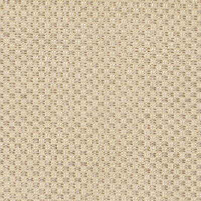 Safavieh South Hampton Beige Rug