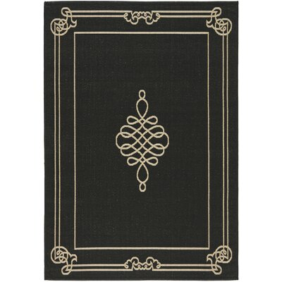 Courtyard Black/Creme Rug