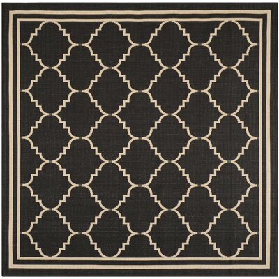 Courtyard Black / Creme Rug