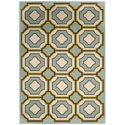 Safavieh Hampton Light Blue / Ivory Outdoor Rug