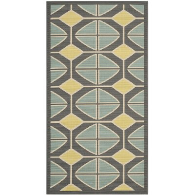 Safavieh Hampton Dark Grey / Light Blue Outdoor Rug