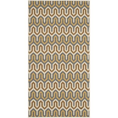 Safavieh Hampton Brown / Camel Outdoor Rug