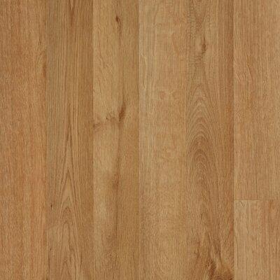 Mohawk Flooring Elements Carrolton 8mm Red Oak Laminate in Wheat Strip