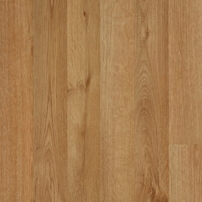 Elements Carrolton 8mm Red Oak Laminate in Wheat Strip