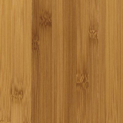 "Mohawk Flooring Rarity Pacific 3"" Engineered Pacific Bamboo Flooring in Carmelized"
