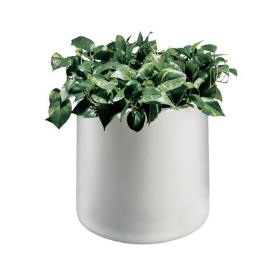 Commercial Zone Planter