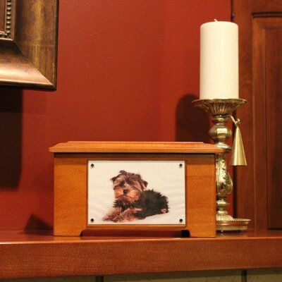 Dynamic Accents Pet Urn / Memory Box