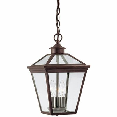 <strong>Savoy House</strong> Ellijay 3 Light Outdoor Hanging Lantern