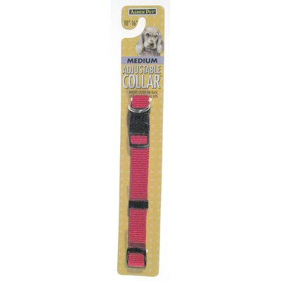 Aspen Pets Adjustable Dog Collar