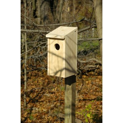 Heartwood Flicker Bird House