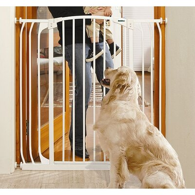 Extra Tall Hallway Pet Gate