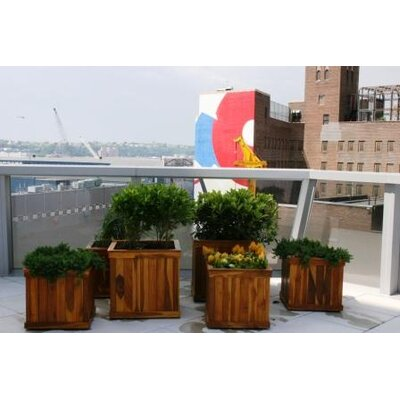 Diamond Teak Cubed Box Planter