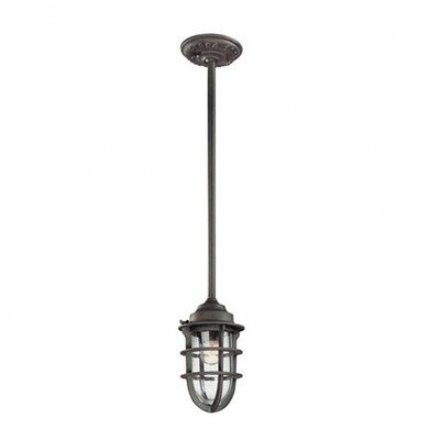 Troy Lighting Wilmington 1 Light Pendant