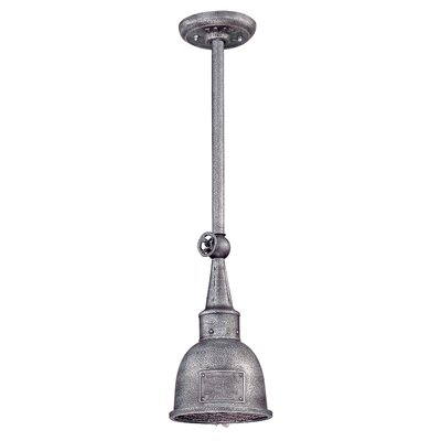 Troy Lighting Raleigh 1 Light Outdoor Pendant