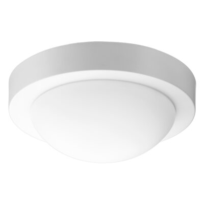 Single Light Flush Mount