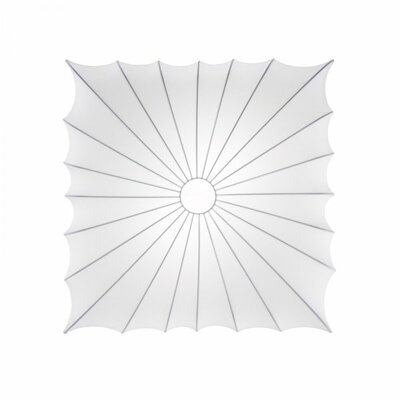 Muse 2 Light Wall and Ceiling Fixture