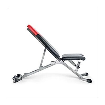 Bowflex Wayfair