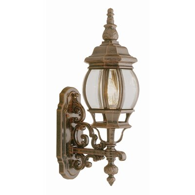 "TransGlobe Lighting Outdoor 20.5""  Wall Lantern"