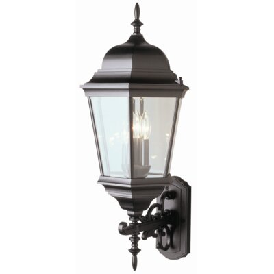 TransGlobe Lighting Outdoor 3 Light Wall Lantern