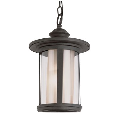 TransGlobe Lighting 1 Light Outdoor Medium Hanging Lantern