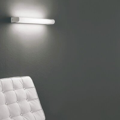 Zaneen Lighting Dido 2 Light Wall Sconce