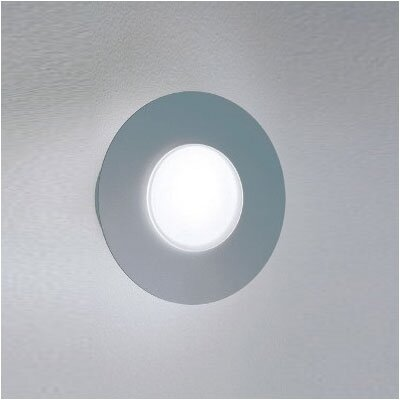 Zaneen Lighting Duo Circular Wall or Ceiling Flush Mount