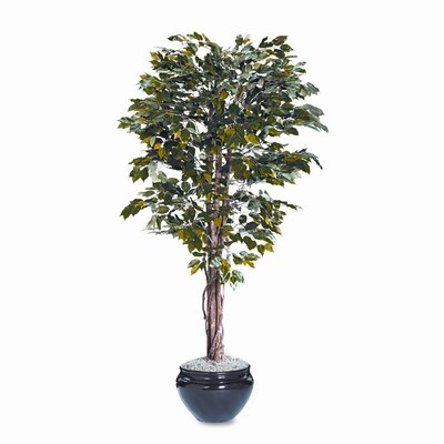 Nudell Plastics Nu-Dell Artificial Ficus Tree