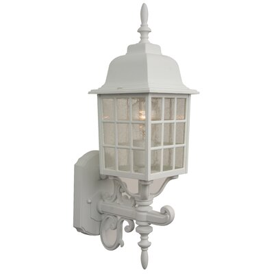 Craftmade Cast Aluminum Outdoor Grid Cage Wall Mount with Seeded Water Glass