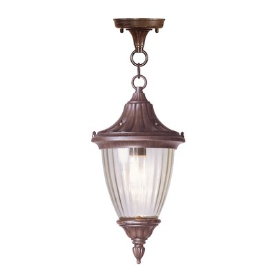 Livex Lighting Townsend 1 Light Outdoor Hanging Lantern