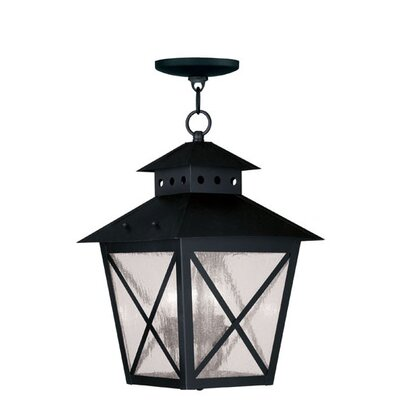Livex Lighting Montgomery 3 Light Outdoor Hanging Lantern