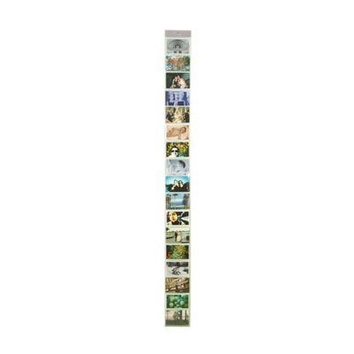 Kikkerland Horizontal Photo Strip Picture Frame