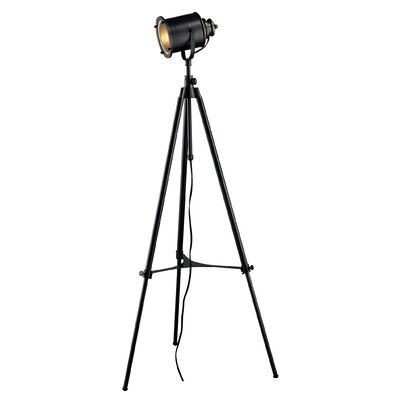 Dimond Lighting Legacies Ethan Adjustable Tripod Floor Lamp