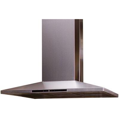Contemporary Series Stainless Island Range Hood