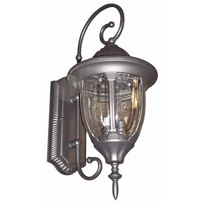Yosemite Home Decor Merili 1 Light Outdoor Wall Lantern