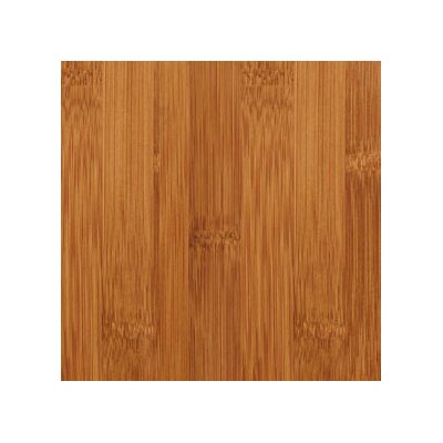 "Teragren Craftsman II 5-1/2"" Horizontal Bamboo Flooring in Caramelized"