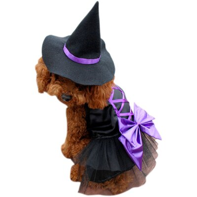 Anit Accessories Witch  Dog Costume